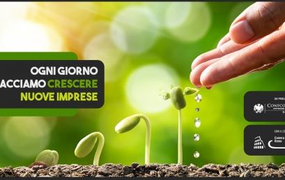 Creazione e sviluppo d'impresa: scopri l'assistenza di Confcommercio Roma